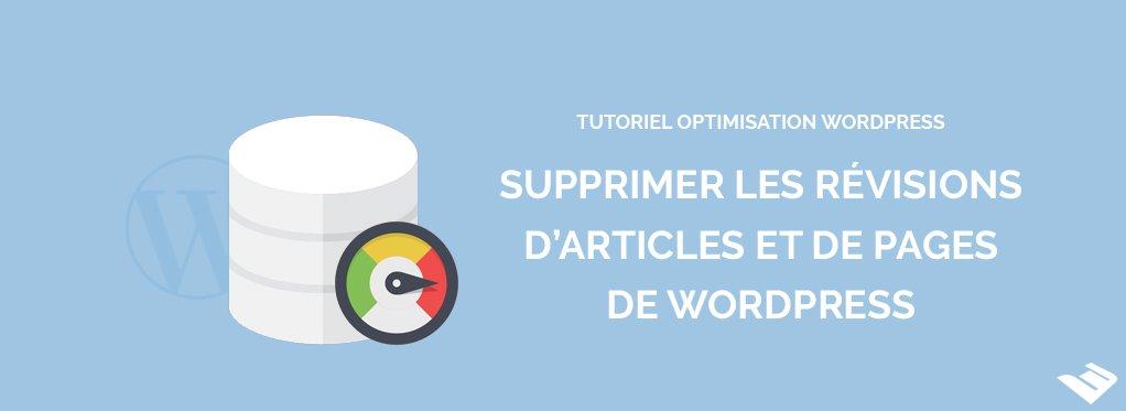 Supprimer les révisions d'articles et de pages de Wordpress